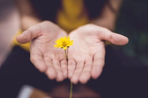 Mindfulness and NVC Self-Empathy Workshop July 11 @ 9:30am (Online)
