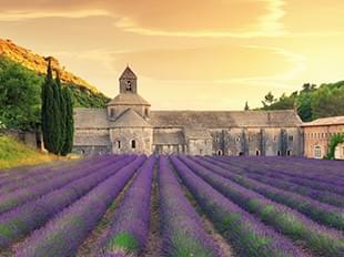 法國普羅旺斯薰衣草10天浪漫之旅