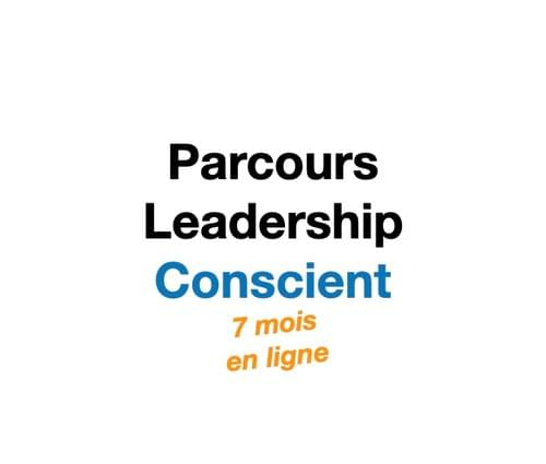 Parcours Leadership conscient 7 mois