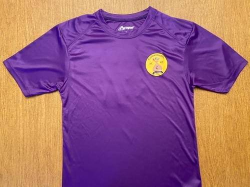 AC Commonwealth Warmup Shirt