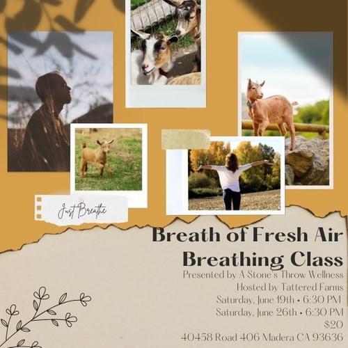A Breath of Fresh Air- Breathing Class