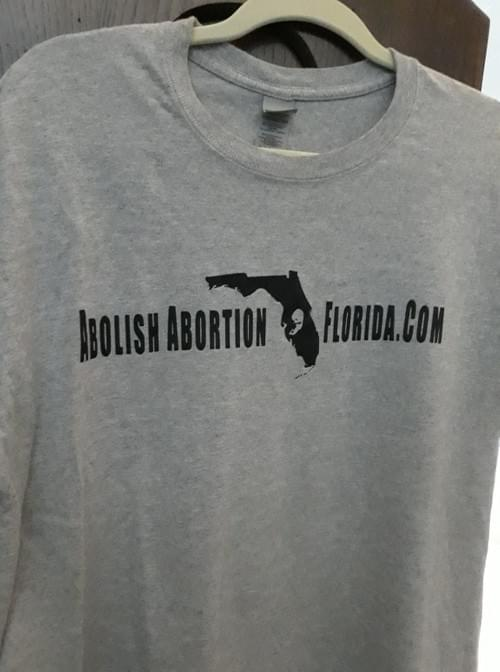 Slightly worn - Free to be Born - Baby on Back - Gray - LARGE ONLY
