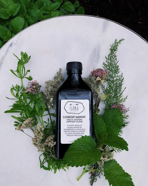 Elderberry Harmony Multi-System Support Elixir