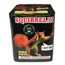 Squirrel!!!
