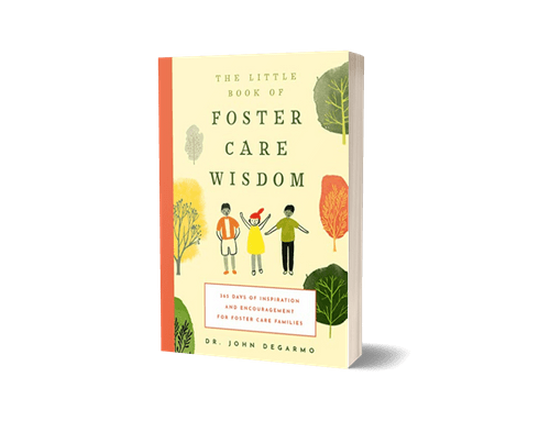 The Little Book of Foster Care Wisdom * * FREE BOOK * *