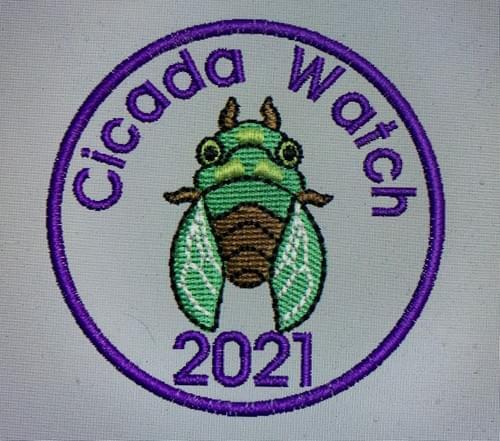 Cicada Watch