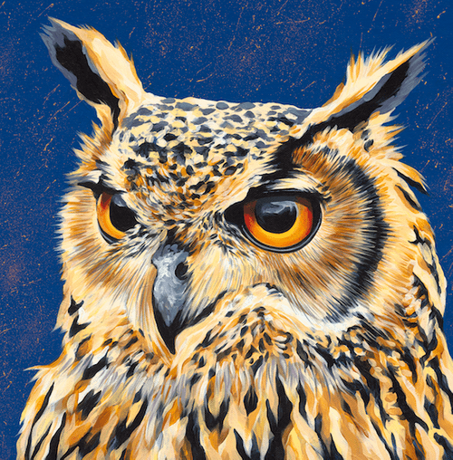 Owl Boy - A3 Limited Edition of 50, Fine Art Print
