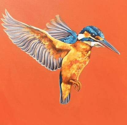 New Print!! Kingfisher - 50x50cm Fine Art Print - Only X10 available!!