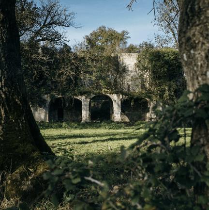Château de Vibrac