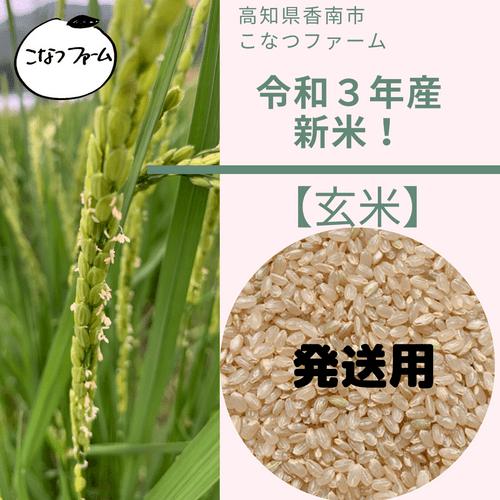 【玄米】2021年新米