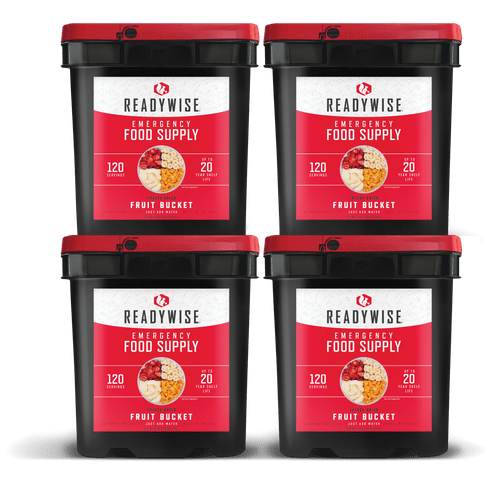 480 Serving Freeze Dried Fruit