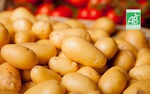 Pomme de terre grenaille BIO - 500 g - Coopérative Bio IDF (91)