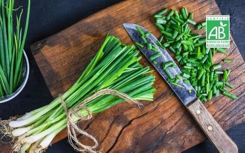 Oignon frais BIO - 1 botte - Les Limons de Toulotte (77)
