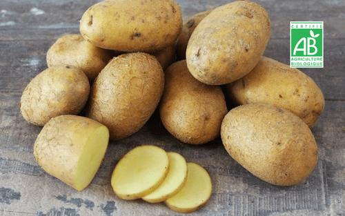 Pomme de terre blanche BIO - 1 kg - Rémi Seingier