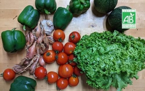 Panier de légumes taille S - 1 panier - bio local et de saison