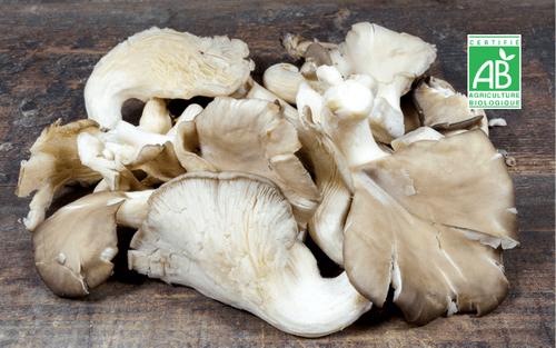 Champignons pleurotes grises BIO - 200 g - La Caverne (75)