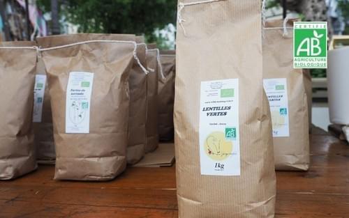 Lentilles vertes BIO - 1 kg - Rémi Seingier - Seine-et-Marne (77)