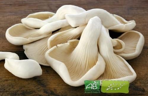 Champignons pleurote Grise bio - 200 g - La Caverne (75)