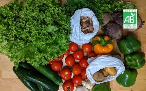 Panier de légumes taille M - 1 panier - bio local et de saison