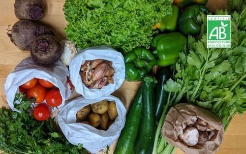 Panier de légumes taille L - 1 panier - bio local et de saison