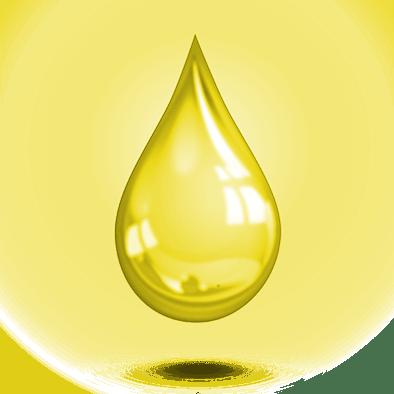 Équilibre : gardien jaune