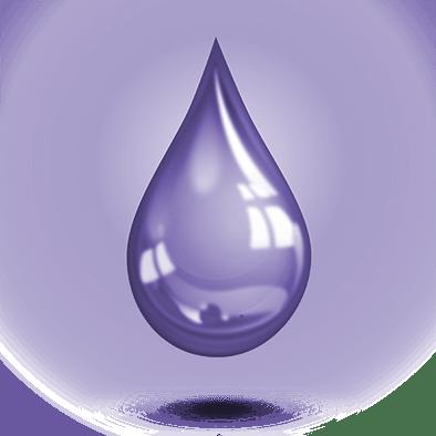 Connexion - Gardien violet