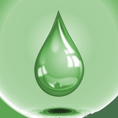 Protection - Gardien vert
