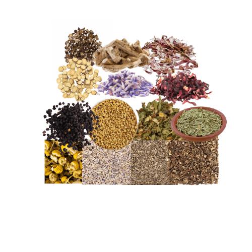 Organic Herbs + Raw Wildcrafted Sea Moss