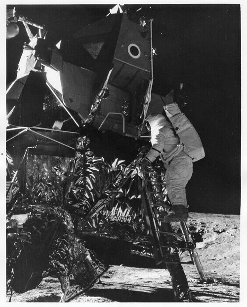 APOLLO 12  Astronaut Alan Bean on LM Ladder