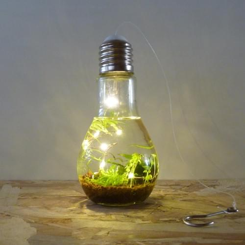 Ampoule lumineuse XS