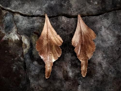 Celery top pine stud earrings