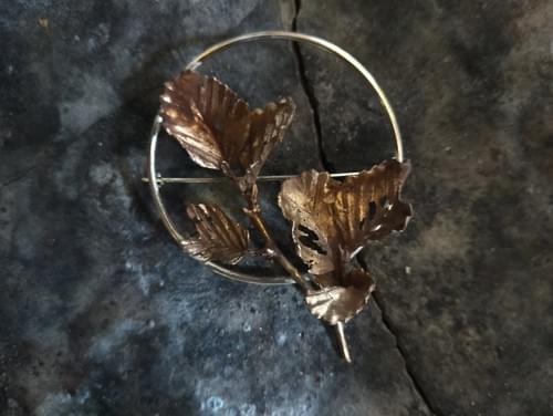 Fagus beech hoop brooch