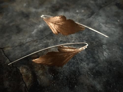 Celery top pine thread earrings