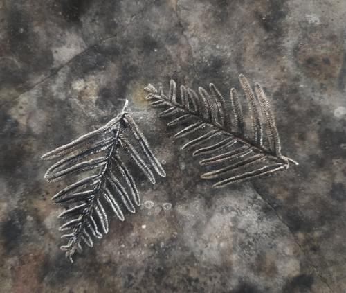 Bracken fern stud earrings