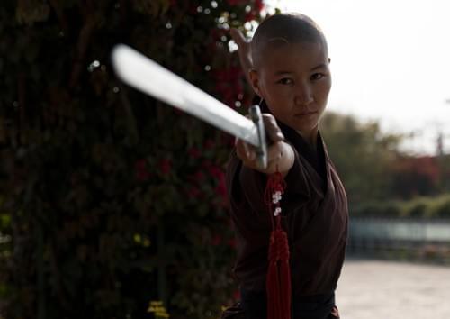 Kung Fu Nun with Sword