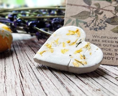 100 Botanical Seed Bomb Hearts for Party and Wedding Favors, Gardening Gifts