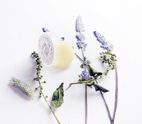 Genoveva Natural Solid Perfume Sample Orange Blossoms Neroli, Ginger, Vanilla, Tonka Bean