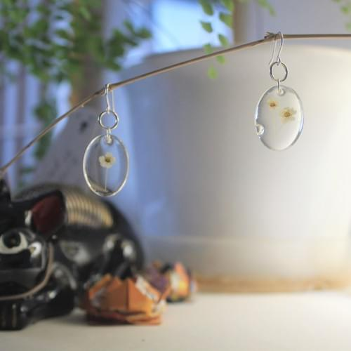 white cameo earrings