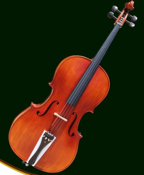 Winkainer W3874 - 初級大提琴