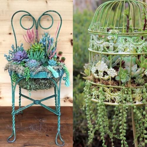 Succulent Chair Workshop and Brunch