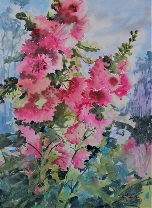 Mary's Double Hollyhocks
