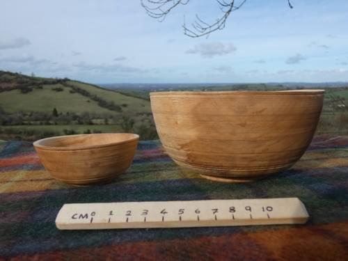 Sycamore Double Nested Bowl Set