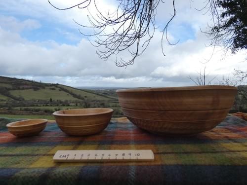 Sycamore Triple deep nested bowl set