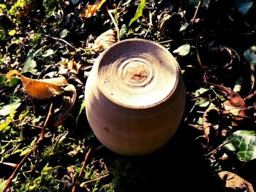 Squat Sycamore Cup