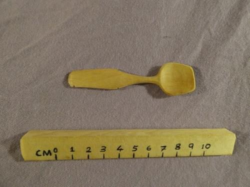 Sycamore Tiny Spoon