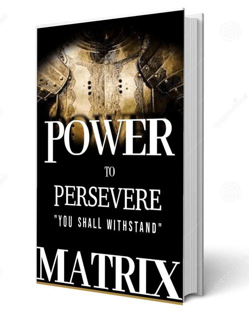 Power to Persevere Matrix