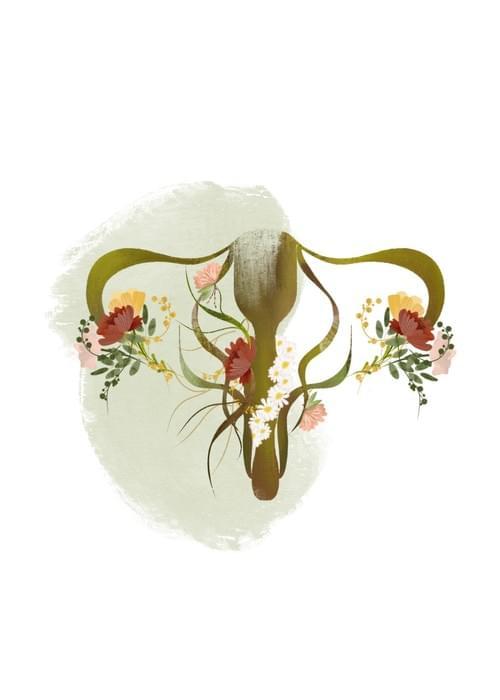 Botanical Uterus