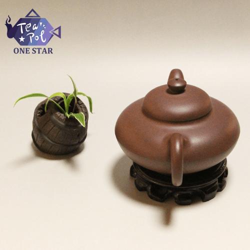 Acacia pot