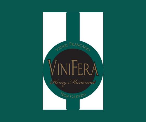 Vinifera 2018 | Henry Marionnet | AOC Touraine | Nature | Blanc sec 75cl