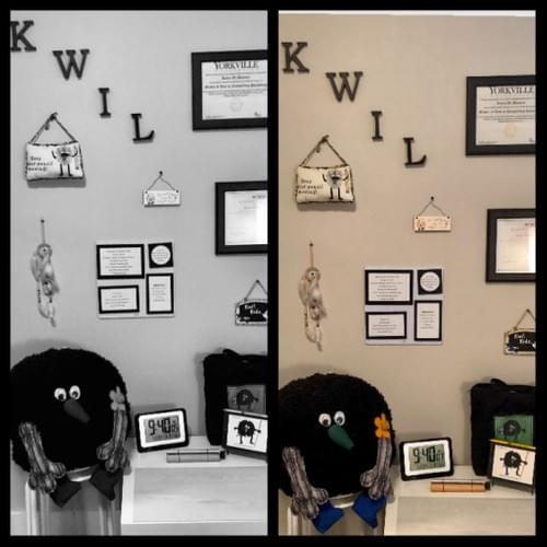 Kwil's Wisdom Wonder & Wellness Wall Template